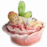 Misty Hibiscus Flitterbyes Butterfly Fairy Trinket Box