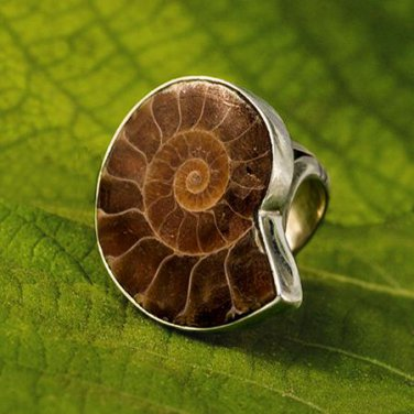 Ammonite Ring - Fossil Jewelry - Tribal Jewelry - Ethnic Jewelry - Unisex Jewelry -