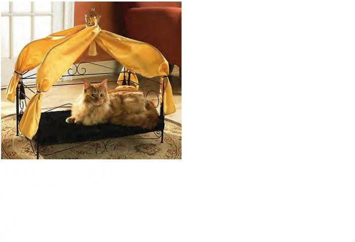 Fancy Pet Bed FREE SHIPPING