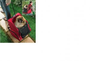 2 In 1 Pet Carrier FREE SHIPPING