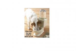 Whimsical Pet Dog Bowls FREE SHIPPING