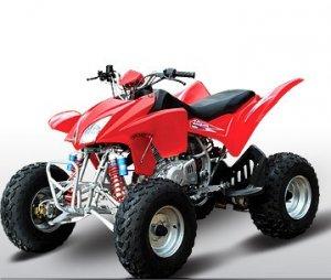 Jianshe Motor 300cc Sport Air Cool ATV (Quad)