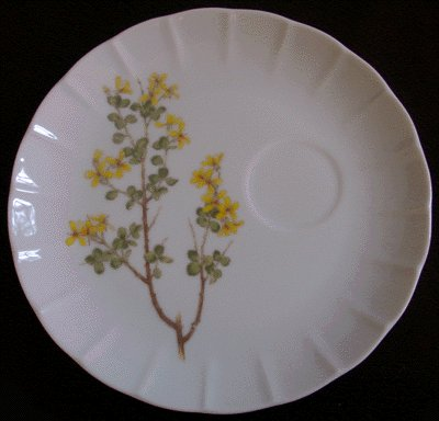YORKTOWN Toscany Snack Plate JAPAN