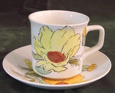 JOHNSON BROS Sierra/Flowers CUP & SAUCER England