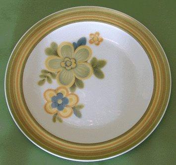 NORITAKE Expression CHESTNUTHILL Salad Plate MOD -B Chestnut Hill