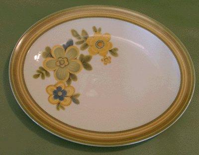 NORITAKE Expression CHESTNUTHILL Oval Platter MOD Chestnut Hill