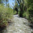 Teton Creek Resort / Driggs, ID / 2 Bedroom