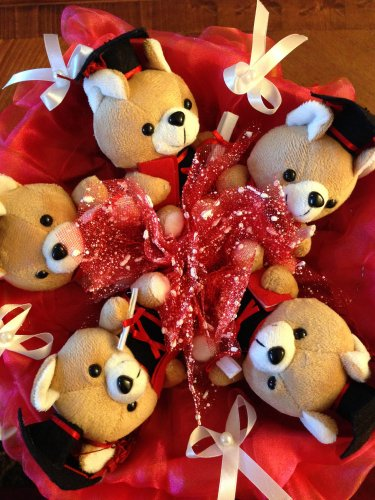 Five Red Dr. Bear Bouquet, Best Gift for Graduation
