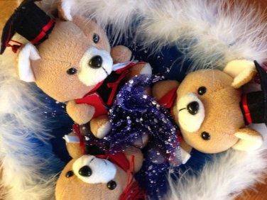 Three Blue Dr. Bear Bouquet, Best Gift for graduation