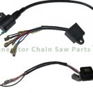 Ignition Coil CDI Stator For ETQ TG1200 Fueln 1250 Harbor Freight 900 Generator
