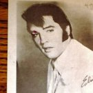 Elvis Presley Fan Club Black & White Postcard 4 x 6
