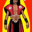 Sho'nuff  Amaral Cartoons Poster