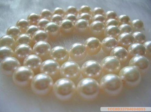 Clasic Sea Water Pearl Necklace 7-8mm white