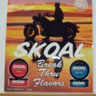 VINTAGE 1993 SKOAL FLAVORS MOTORCYCLE DOOR/COUNTER DECAL 6X7""