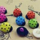 Black Body LadyBugs Multicolor Novelty Buttons - Plastic Sewing craft supplies