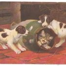 """""""PUPPIES PLAY WITH KITTEN"""" by B.COBBS PC ENGLAND"""