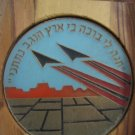 IDF Operation Grapes of Wrath Medal ISRAEL 1996