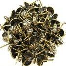 C.S. Osborne Daisy Nail Tacks Antique Brass 100pk [Office Product]