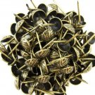 "C.S. Osborne Overlap Nail Tacks Antique Brass 3/4"" 100pk [Office Product]"