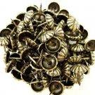 "C.S. Osborne Daisy Nail Tacks Antique Brass 1/2"" 100pk [Office Product]"