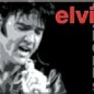 Elvis Ice Box Magnet #M1060