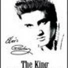 Elvis Ice Box Magnet #M880