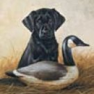 Lab Puppy Duck Hunting Dogs Tin Sign #926