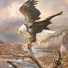 Bald Eagle Tin Sign #1029