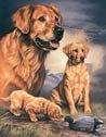 Golden Duck Hunting Dog Tin Sign #911
