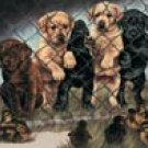 Jailbirds Puppy on Fence Tin Sign #913