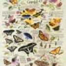 Butterfly Garden Tin Sign #983