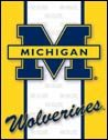 Michigan Wolverines tin sign #1363