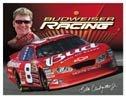 Dale Earnhardt Jr Nascar  tin sign #1257