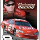 Dale Earnhardt Jr Nascar  tin sign #1370