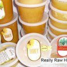 6 Lb WILDFLOWER RAW HONEY  100%  PURE & NATURAL Crystallized / Granulated