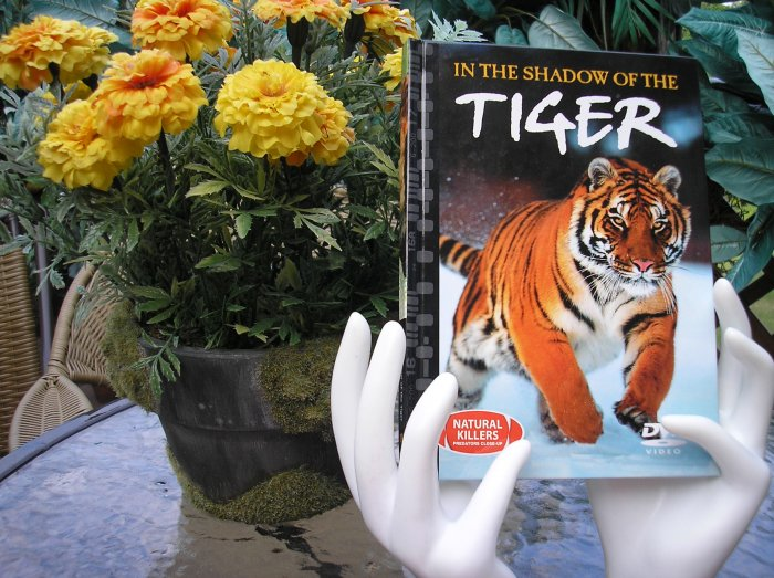 NATURAL KILLERS - PREDATORS CLOSE-UP Series: IN THE SHADOW OF THE TIGER DVD VIDEO and BOOK!