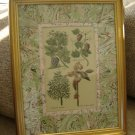 "JOHN RICHARDS ""BOTANICAL"" DECORATIVE PRINT from HOWCHOW COLLECTION #GRJ-0500AR - BEAUTIFUL!"