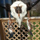 Native American Adorned Replica Steer Skull Wall Mounted Trophy Wall Sculpture by Johnny Halstend!