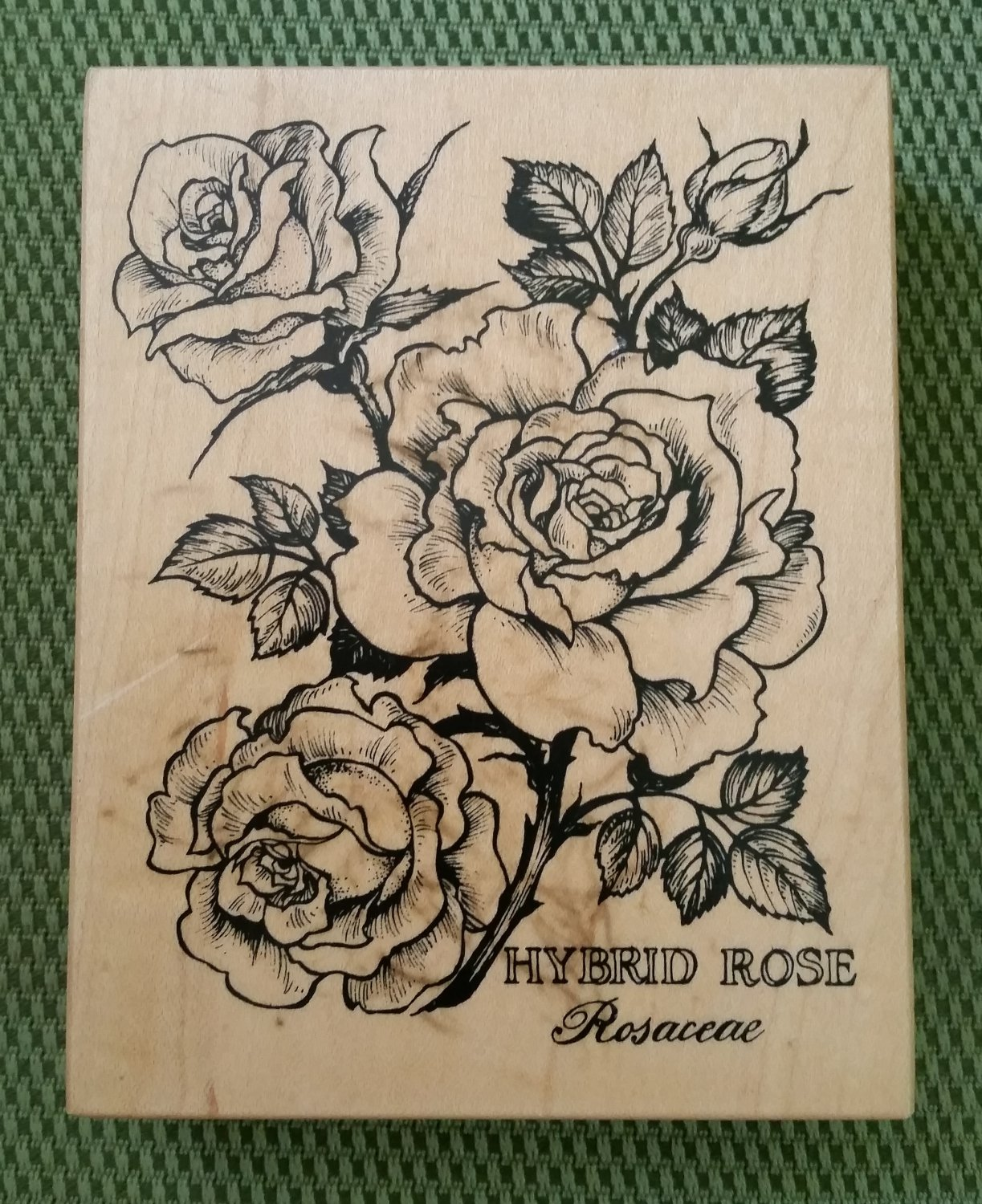 Hybrid Rose Rosaceae Wood Mounted Rubber Stamp #K-1636 by PSX from 1995-MADE IN USA-RETIRED-NEW!