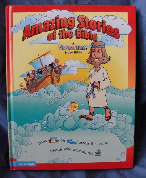 Amazing Stories of the Bible A Picture That! Bible Story Book