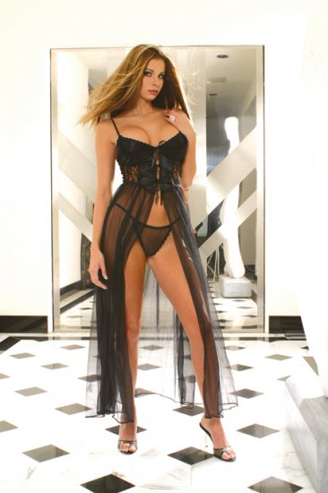 Satin Sheer Gown   Item 1844X