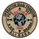 PSU 307 KNB SECTION ONE SHUAIBA OPERATION IRAQI FREEDOM ALI BABA MILITARY PATCH