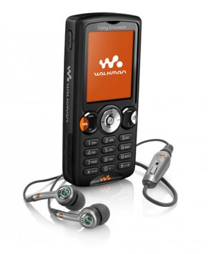 Sony Ericsson W810i Black QuadBand GSM World Phone (Unlocked)