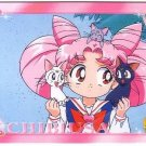 Sailor Moon Super S World 4 Carddass EX4 Regular Card - N25