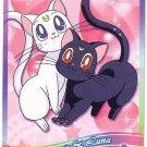 Sailor Moon Super S World 3 Carddass EX3 Regular Card - N11
