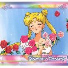 Sailor Moon Super S World 3 Carddass EX3 Regular Card - N32