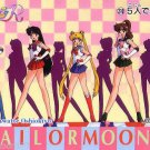 Sailor Moon R Pull Pack PP 6 Regular Card #310