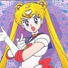 Sailor Moon 1992 Banpresto 1st Print Regular Card #10