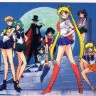 Sailor Moon S Bromide Regular Card #175