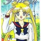 Sailor Moon Stars Battle Private Regular Card #12
